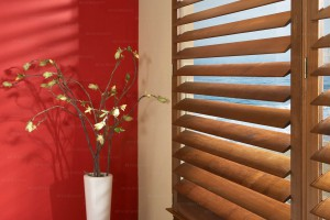 Window Blind Cleaning Services